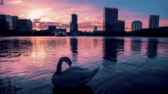 Lake Eola Orlando Courier Service